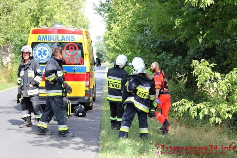 Byki zaatakowały mężczyznę pod Trzemesznem w Wielkopolsce. Trafił do szpitala w Poznaniu. Jego stan jest poważny