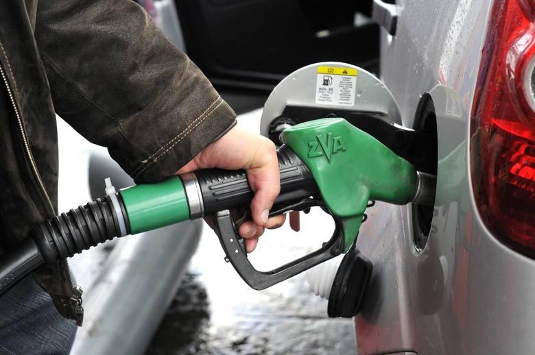 Ceny benzyny w Łodzi. Czy będziemy tankować jeszcze taniej [INFOGRAFIKA+FILM]