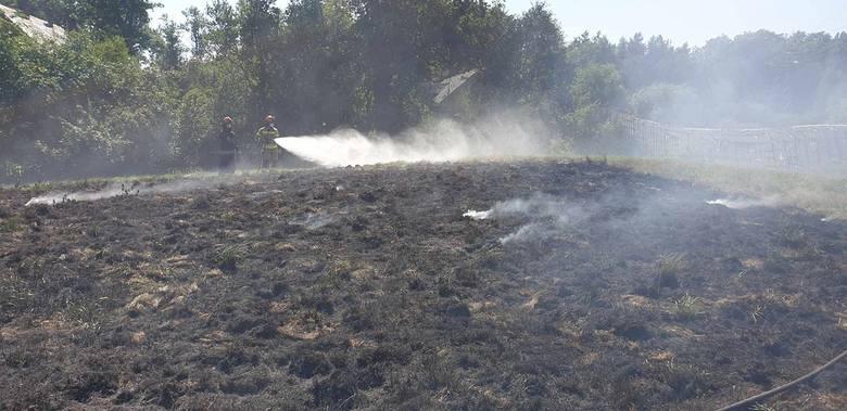W sobotę o godzinie 12:44 zostaliśmy zadysponowani do miejscowości Żelisławie do pożaru traw - piszą strażacy z OSP Złocieniec na swoim profilu facebookowym.
