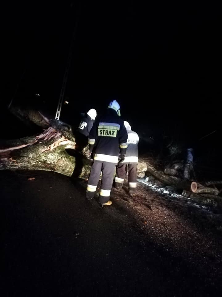8 interwencji związanych z silnymi porywami wiatru jakie wystąpiły w nocy z 15 na 16 marca zanotowali strażacy z powiatu sławieńskiego. - Wszystkie działania