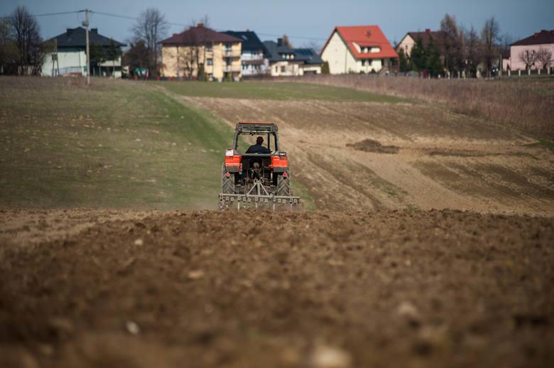 Bauerzy z Austrii pozazdrościli opolskim rolnikomAustriacy z zazdrością patrzyli na nasze duże gospodarstwa, u nich trudno dokupić ziemie.