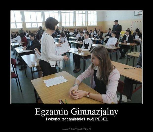 Trwają egzaminy gimnazjalne 2019. Internauci komentują je oczywiście na swój sposób, sieć jest pełna dowcipów związanych z egzaminem. Zobaczcie wybrane
