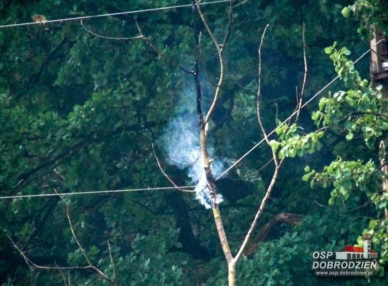 Wczoraj wieczorem strażacy musieli usunąć drzewo w Klekotnej (gm. Dobrodzień), które przewróciło się na linię średniego napięcia. W akcji brały udział