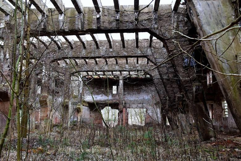 Opuszczona cegielnia w Radowicach przypomina budynki w Czarnobylu