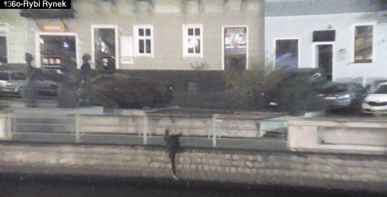Do zdarzenia doszło w niedzielę [12.11.2017] o godzinie 6 rano w Bydgoszczy. Pracownik miejskiego monitoringu zauważył mężczyznę, który przy ulicy Stary