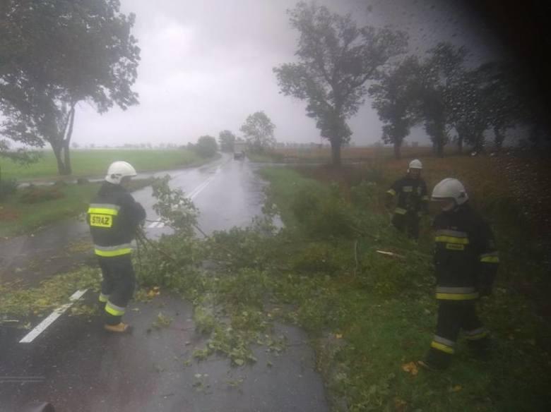 Interwencja strażaków w powiecie nowotomyskim.Przejdź do kolejnego zdjęcia --->