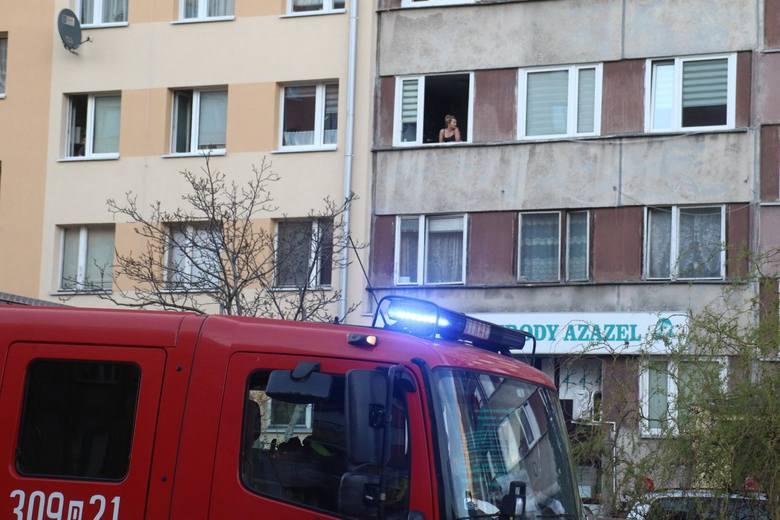Pożar śmietnika na ul. Przybyszewskiego. Paliło się przy przystanku