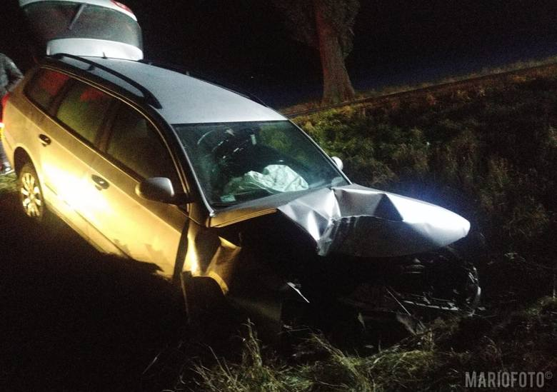 Do wypadku we wsi Kórnica (powiat krapkowicki) doszło w niedzielę o godz. 2.15.Kierowca passata próbował ominąć leśną zwierzynę, stracił panowanie nad