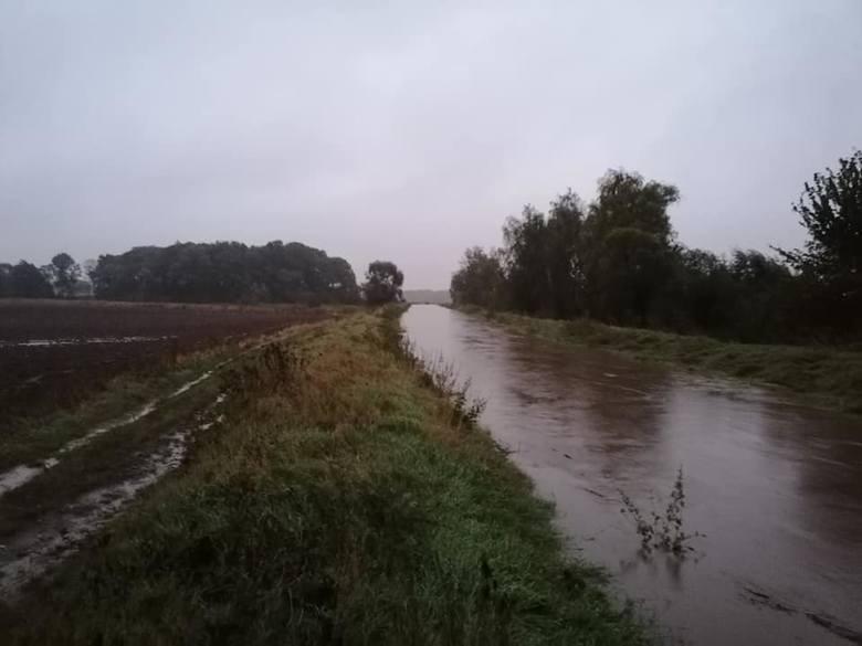 Czarna Woda pod Rogowem Sobóckim. Tutaj w środę przed południem woda przerwała wał przeciwpowodziowy