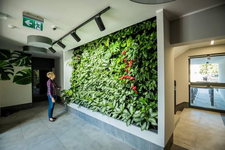 Także w Bydgoszczy,  zgodnie z najnowszymi trendami, natura stanowi ważny element planowania przestrzeni