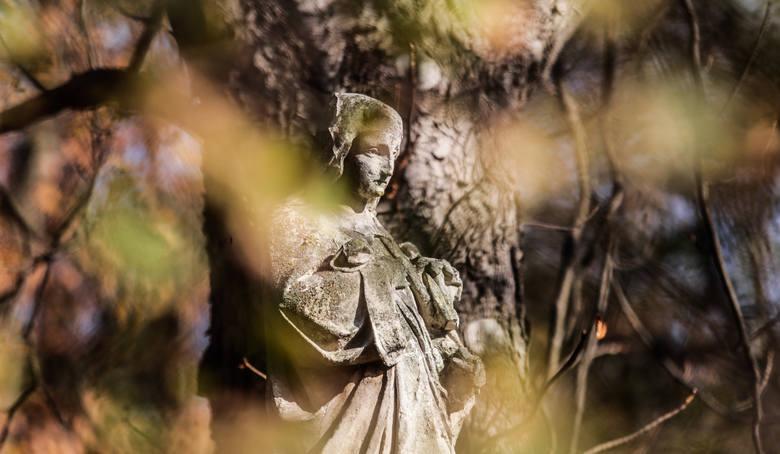 Dzień Wszystkich Świętych na Starym Cmentarzu w Rzeszowie.