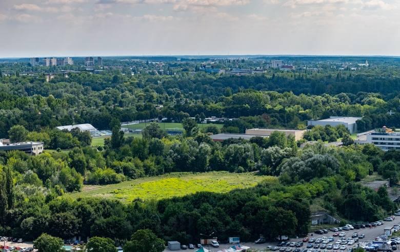 Poznań: Miasto rozpocznie porządki na stadionie Szyca. Co z budową hali?