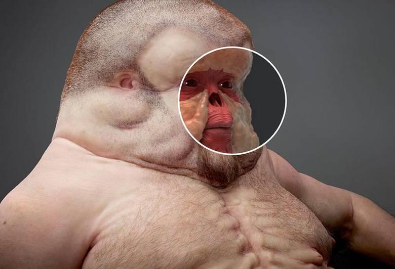 Twarz Grahama jest większa a noc bardziej wklęsły.  Zgadza się, ma to zapobiec jego złamaniu. Głowa jest kulista bez wystających elementów.