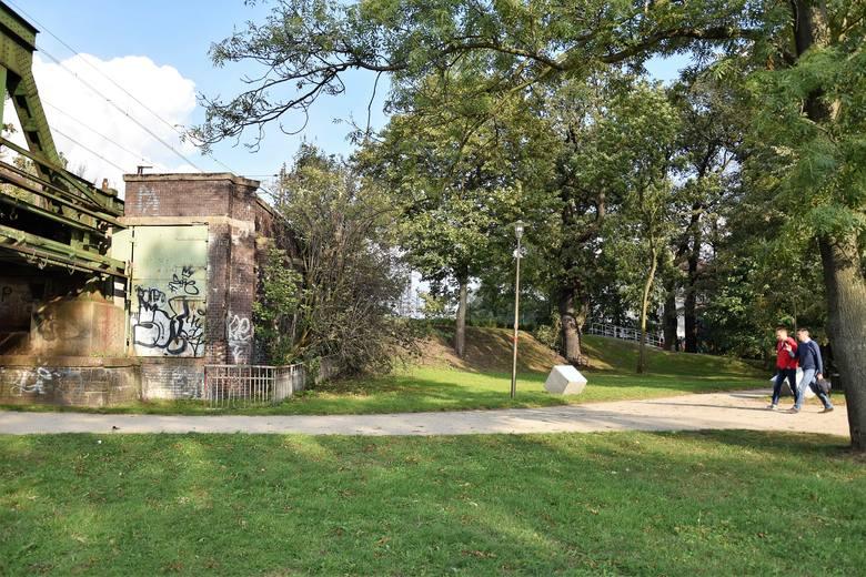 Urząd miasta inicjatywę utworzenia nowych pomników przyrody w ciągu planowanej trasy średnicowej ocenia negatywnie