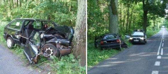 Volkswagen uderzył w drzewo, strażacy rozcinali samochód. Wypadek przez... osę!