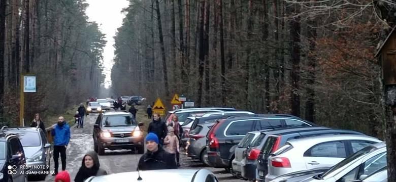 Coraz więcej mieszkańców w ostatnich dniach wybrało się do Królewskich Źródeł w Nadleśnictwie Kozienice.