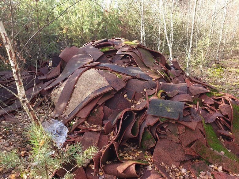 W Lubuskich lasach co roku zalegają tony śmieci! Ich utylizacja to olbrzymie koszty. Ludzie, co z wami?! Dlaczego to robicie?!