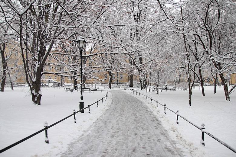 Weekendowy spacer. Kraków zimą [ZDJĘCIA]