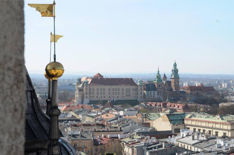 Wieża Mariacka ma 80 m wysokości, by spojrzeć na Kraków z perspektywy kościelnej wieży, trzeba pokonać 239 schodków, by dostać się na wysokość 54 metrów.Nazywana