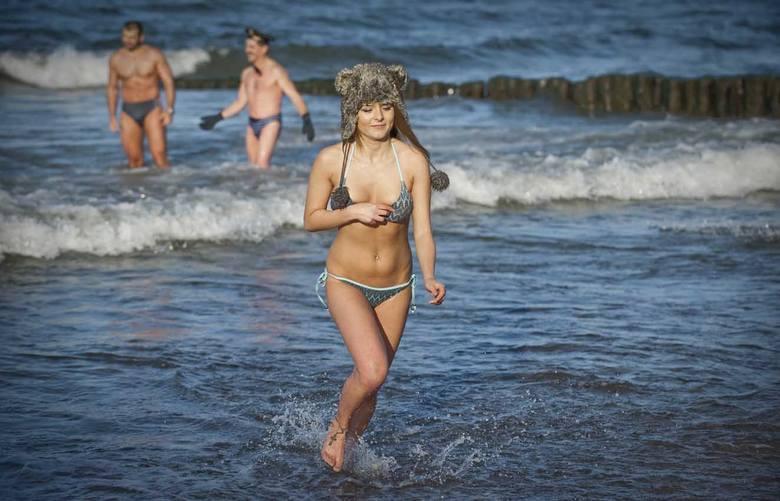 Morsy w Jarosławcu zaliczyły pierwszą zimną kąpiel [zdjęcia]