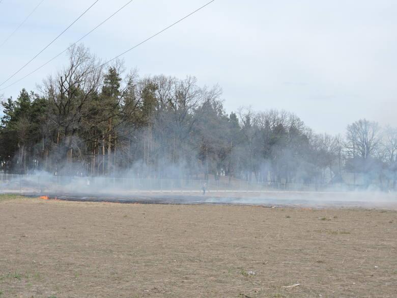 Pożar początkowo wyglądał niegroźnie