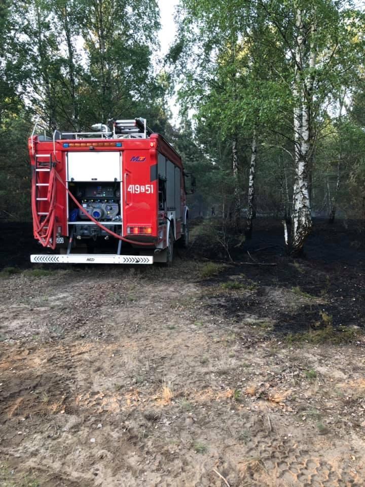 W poniedziałek ok. godz. 15 strażacy odebrali zgłoszenie o pożarze rozprzestrzeniającym się na terenie poligonu drawskiego. W akcji gaszenia brało udział