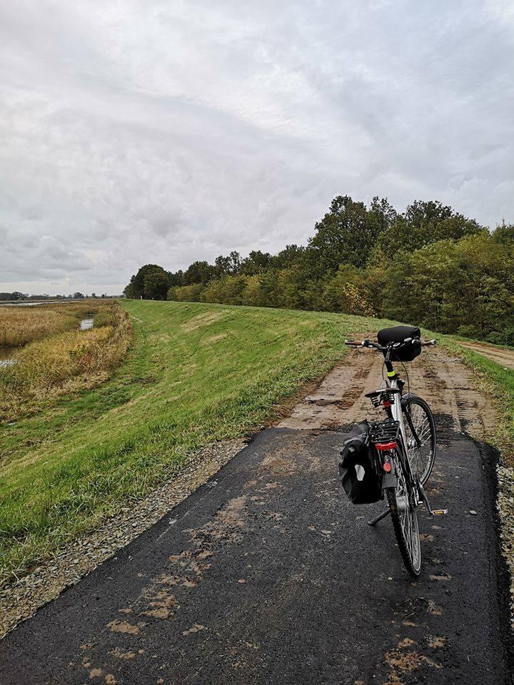 Droga rowerowa urywa się na granicy gminy Górzyca.
