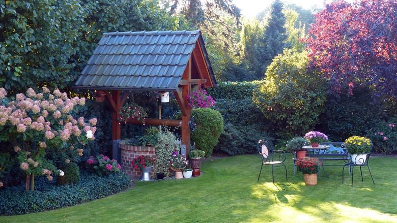 Zakładanie ogrodu i uprawa roślin może być wielką przyjemnością, a widok kwitnących roślin i smak własnych warzyw i owoców będzie nas cieszył przez lata.