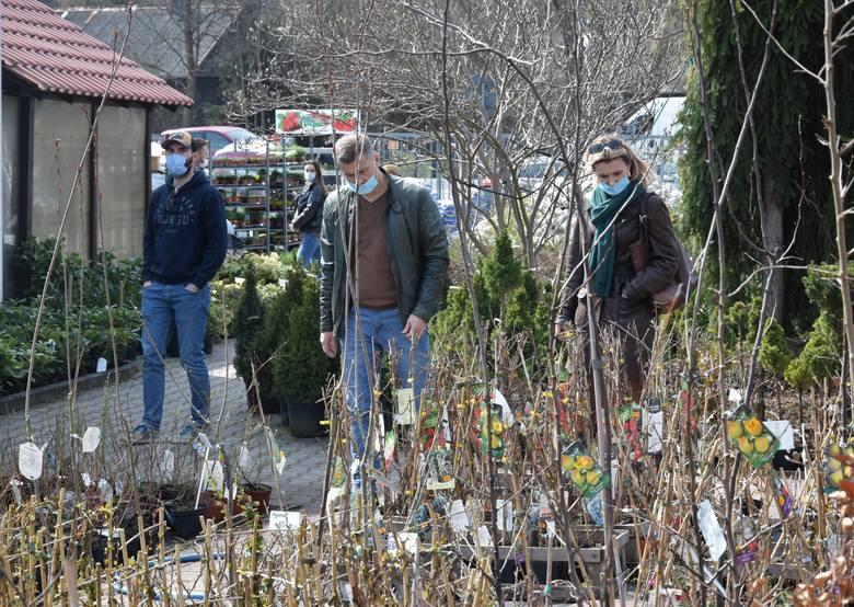 W centrum ogrodniczym Euro Ogród przy ulicy Łódzkiej w Kielcach od rana w sobotę, 10 kwietnia, panował bardzo duży ruch. Trudno było znaleźć wolne miejsce