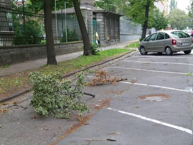 Jeszcze w niedzielę rano na ulicach leżało mnóstwo połamanych gałęzi.