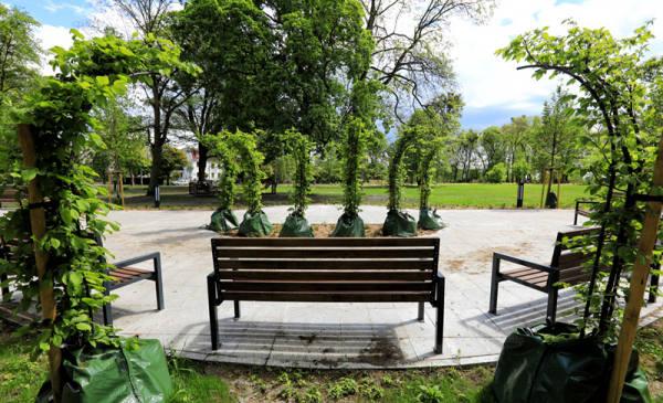 W Toruniu w ostatnim czasie rewitalizacji poddano kilka parków. Powstały również zupełnie nowe miejsca do relaksu na świeżym powietrzu. Zobaczcie, gdzie