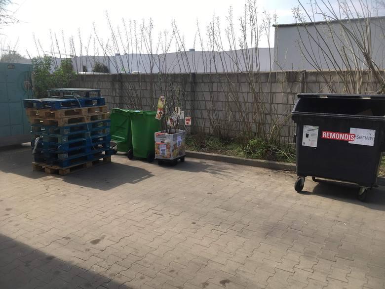 Sadzonki i kwiaty zostały wyrzucone do pojemnika na bioodpady sklepu Biedronki przy ul. Strzeszyńskiej