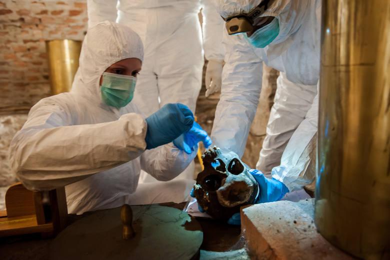 Naukowcy pobierają próbki do badań z nekropolii piastowskich w całej Polsce i dzisiaj dotarli do Brzegu, gdzie w krypcie pod zamkową kaplicą znajdują
