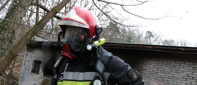 Do Krosna Odrzańskiego pojechał pluton strażaków, chemików z Zielonej Góry