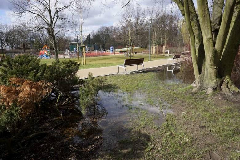 Podtopiony park Wodziczki. Tak ten teren prezentował się w środę