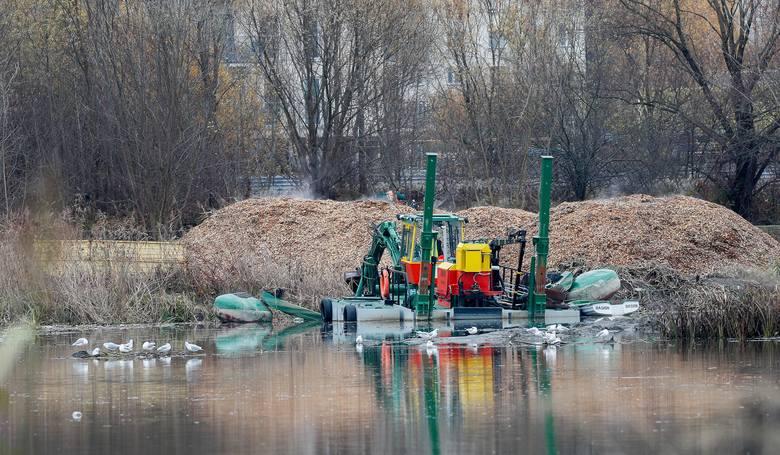 Odmulanie Wisłoka. Trwają prace nad zalewem w Rzeszowie.
