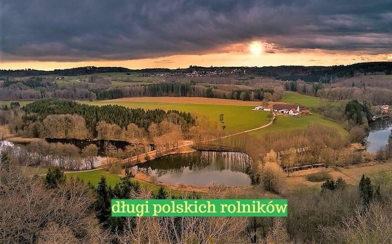 Prawie pół miliarda złotych - tyle wynosi łącznie zadłużenie gospodarstw rolnych, leśnych i rybackich w całym kraju znajdujących się w Krajowym Rejestrze
