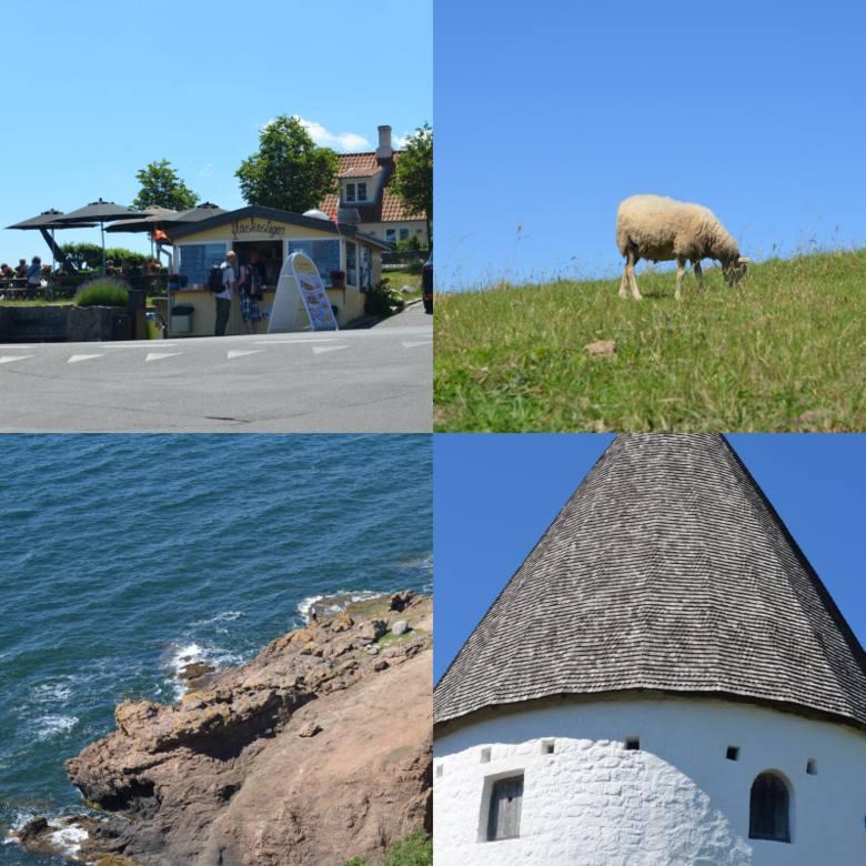 Od kwietnia do października kursują rejsy z Kołobrzegu na duńską wyspę Bornholm. Rejsy cieszą się popularnością wśród turystów z całej Polski, a także