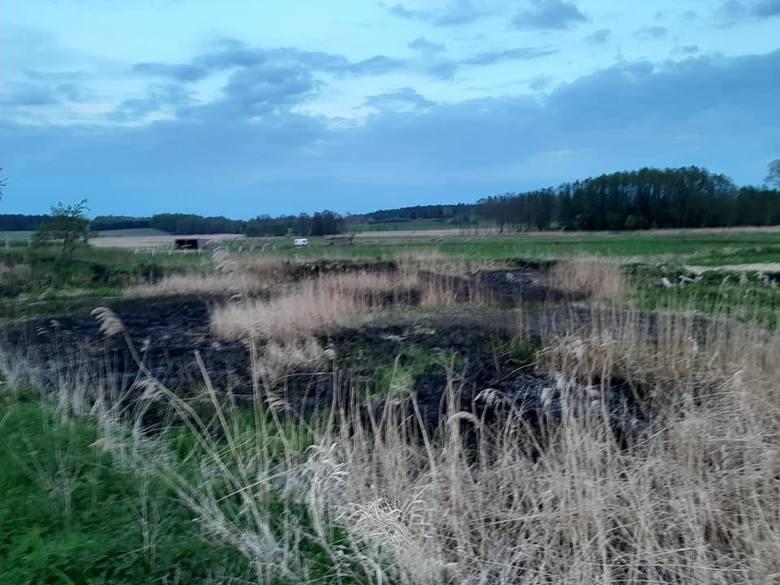 W Sąpolnie (gm. Przechlewo) doszło do pożaru trzcinowisk. Na miejsce działały dwa zastępy Ochotniczej Straży Pożarnej w Przechlewie. Pożar ugaszono po