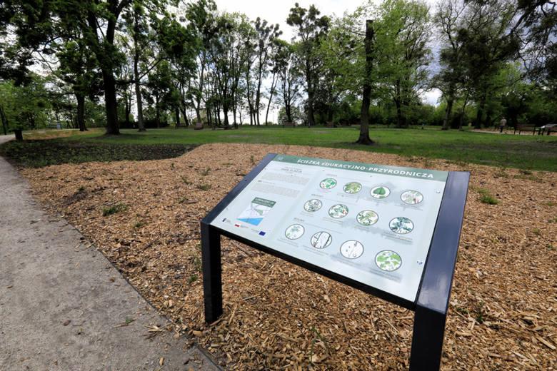 Kolejne tereny parkowe w Toruniu zyskują nowe zagospodarowanie. Po zniesieniu ograniczeń epidemicznych mieszkańcy będą mogli się cieszyć nową zielenią
