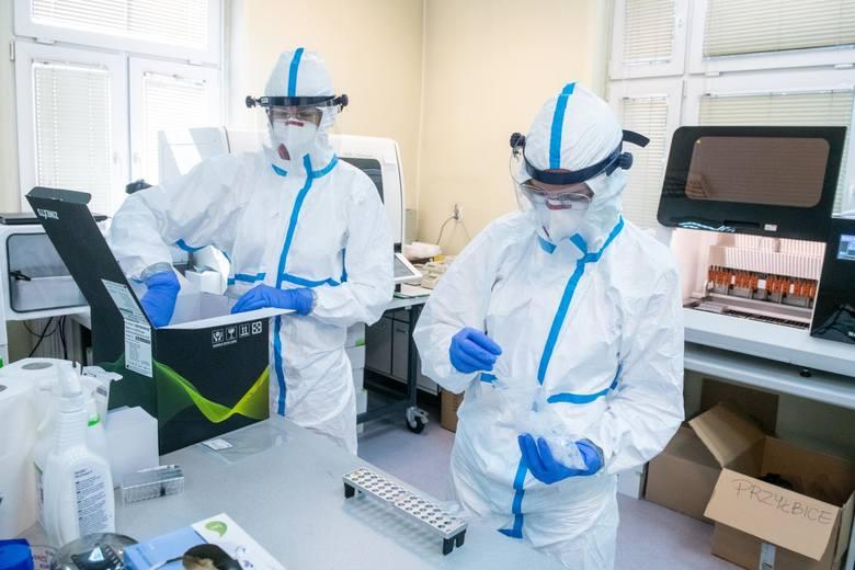Koronawirus w Polsce: Testujemy za mało, by poznać prawdziwy obraz epidemii