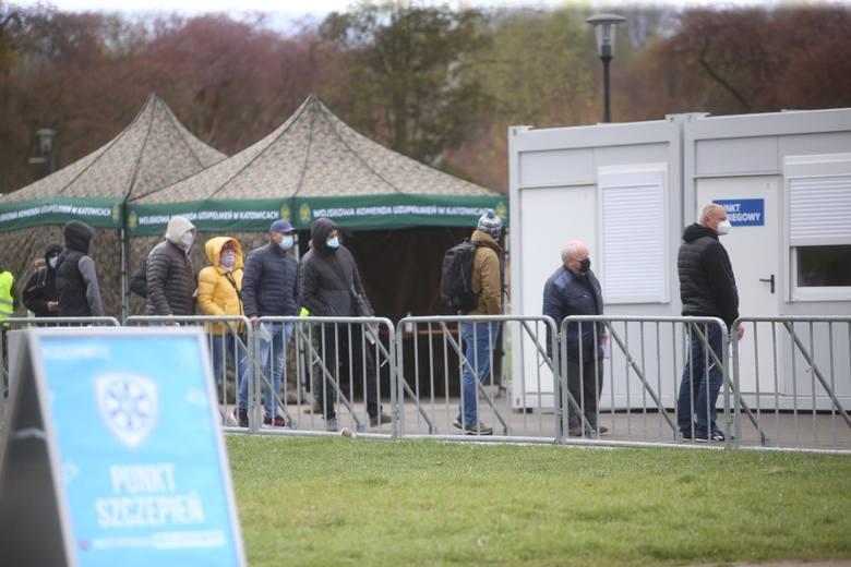 W Parku Śląskim szczepionkę przeciw COVID-19 przyjęło ponad 3 tys. osób