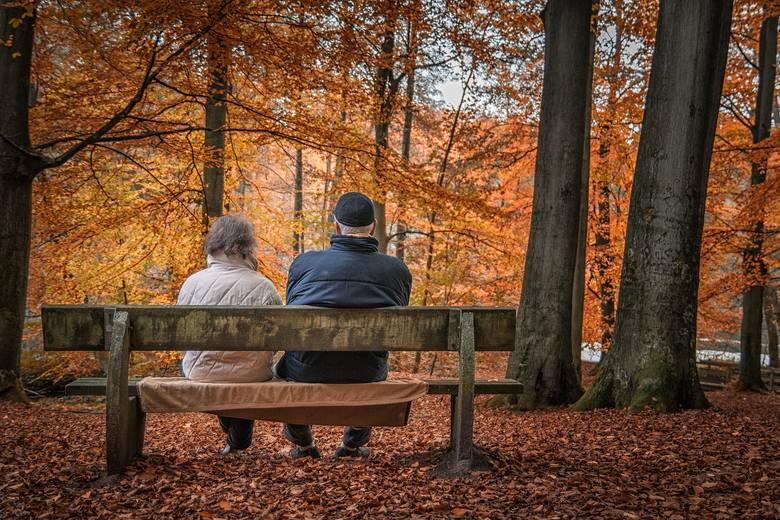 W nowym roku przygotowano wiele dodatkowych pieniędzy dla seniorów. Niektórzy mogą liczyć na nawet 3 tys. złotych więcej. W 2021 roku dojdzie do waloryzacji