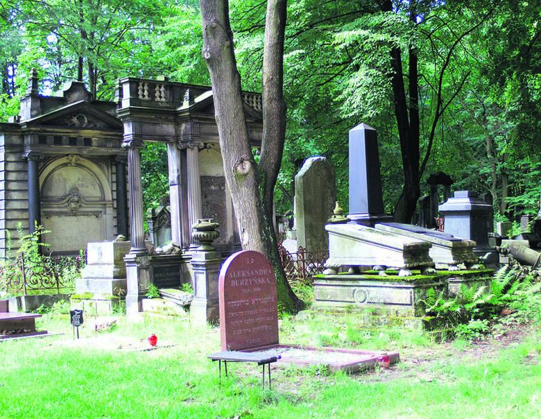 Cmentarz żydowski jest jednym z miejsc najczęściej <br>odwiedzanych przez zagranicznych turystów.