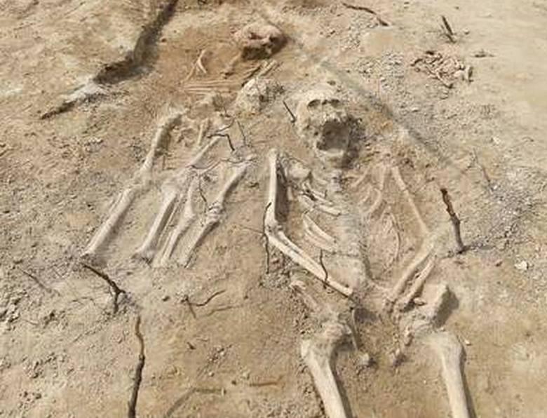 116 szkieletów! Odkryto masowe groby [ZDJĘCIA]