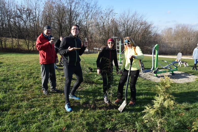 Mieszkańcy Tarnowa społecznie sadzili drzewa na Górze św. Marcina