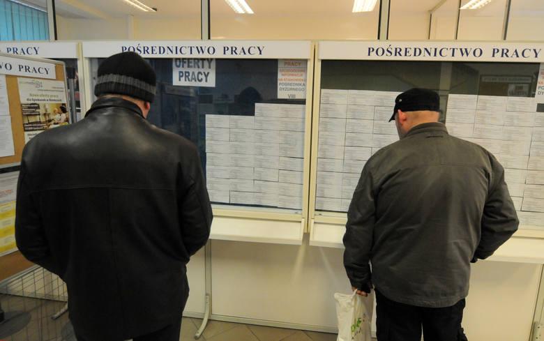 Szukacie pracy? Mamy dla Was kilkanaście najnowszych ofert dostępnych w Powiatowym Urzędzie Pracy w Bydgoszczy. Zobaczcie jacy pracownicy są poszukiwani