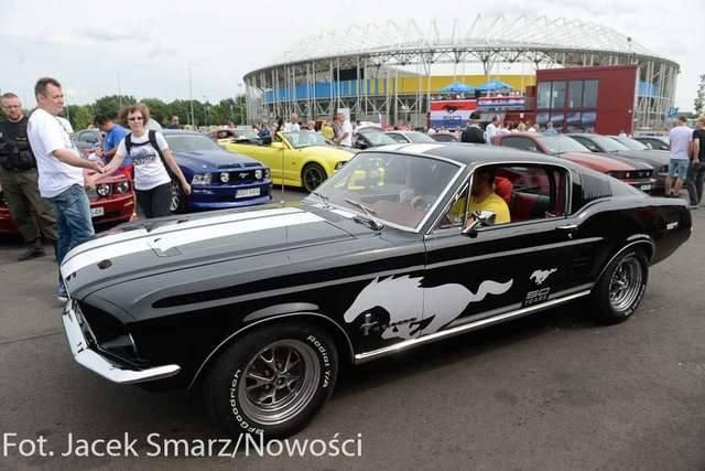 Mustang Race 2014 w Toruniu [zdjęcia]
