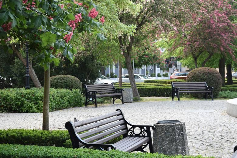 20 ładnych, żeliwnych ławek, stanęło w słubickim parku z fontanną przy placu Przyjaźni. Na ich zakup i montaż gmina przeznaczyła 67 tys. zł. - Ławki