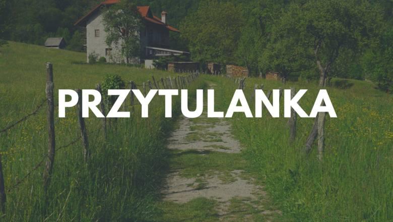 W województwie podlaskim dla odmiany jest słodko i przytulnie... Ta wieś w powiecie monieckim liczy 380 mieszkańców.